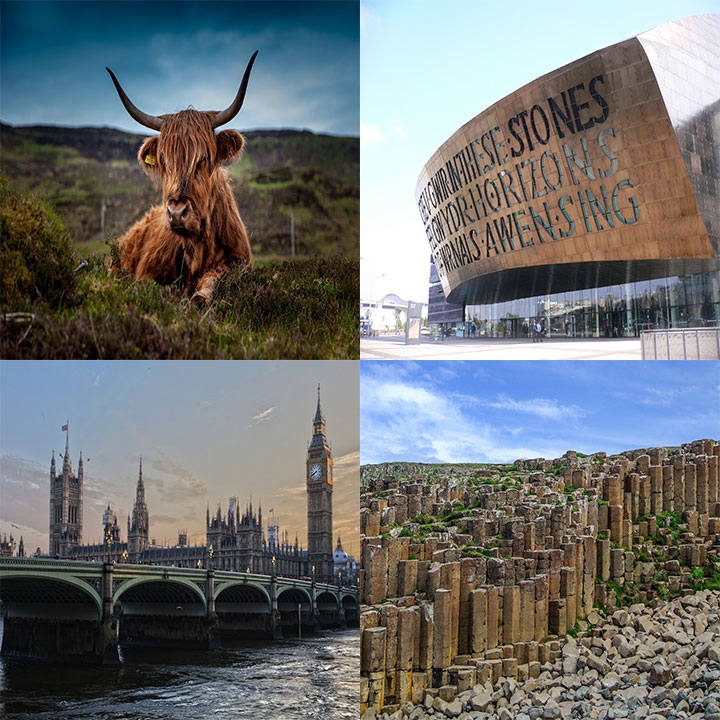 Cow in the Scottish Highlands, Parliament building in Cardiff, House of Parliament in London, Giants Causeway in N. Ireland (4 images in 1 picture)
