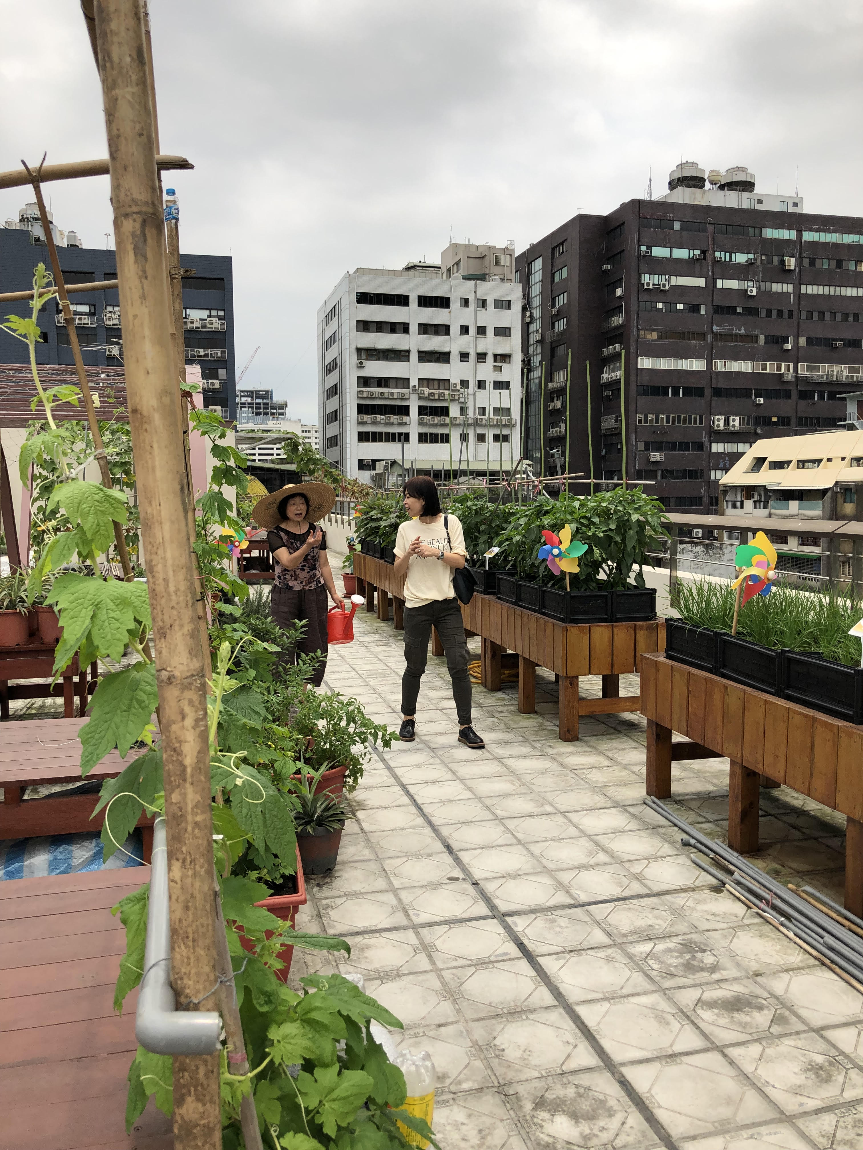 Roof garden at the New Centre for Care in Taiwan