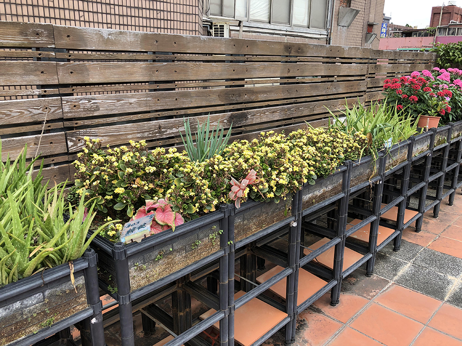 Roof garden at the Seniors Housing and Service Centre in Taiwan